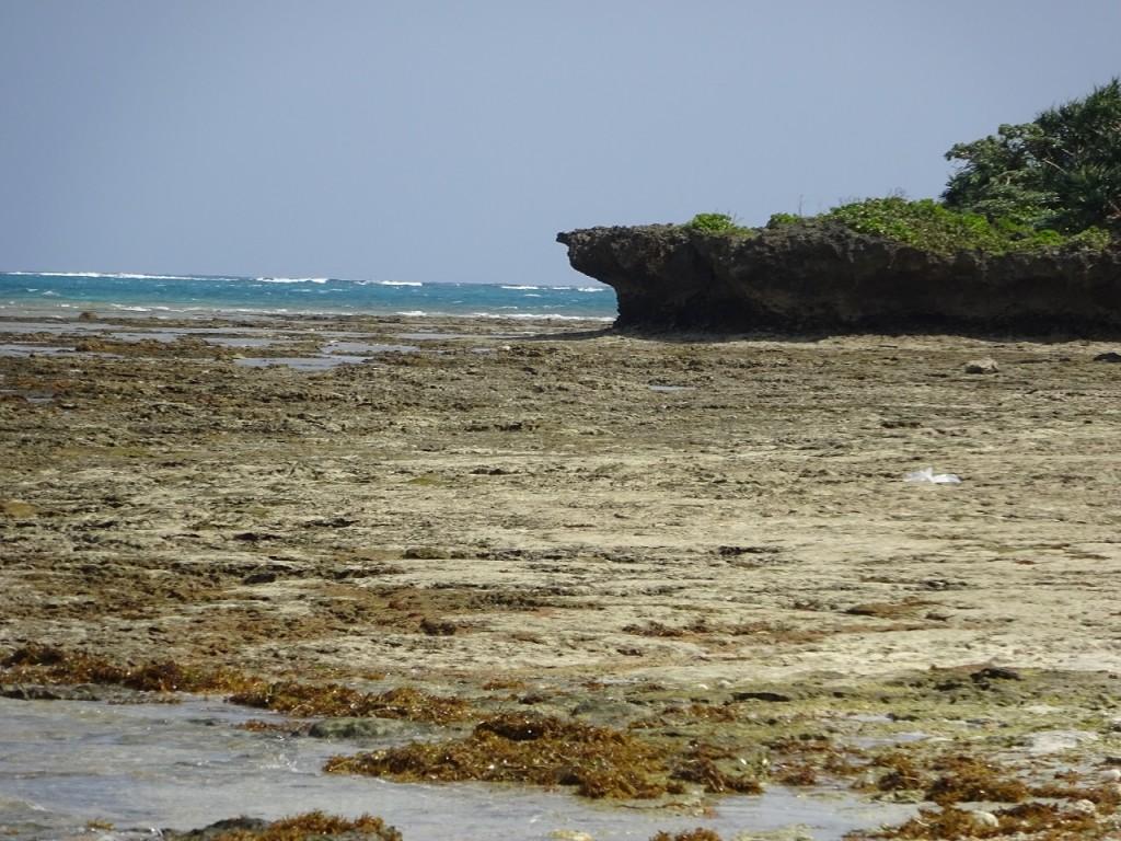 手前にあるのがビーチロックの、奥に見える侵食された岩がノッチの例です
