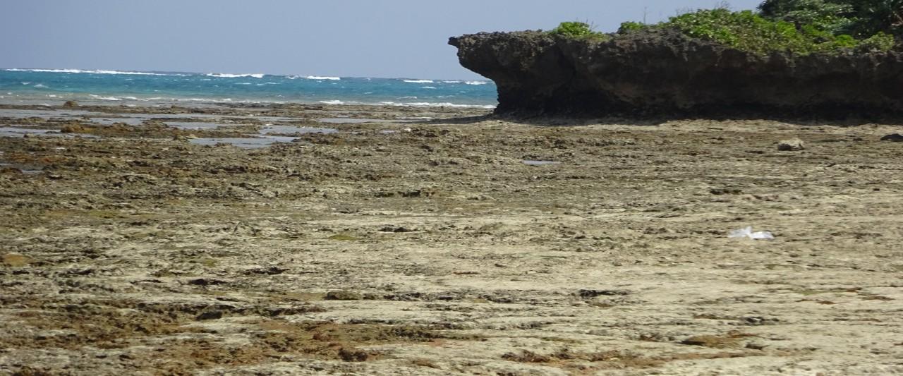 地形と地質